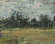 Myr og skog 20x25 2014
