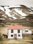 House in Borgarfjoerdhur 100x135cm